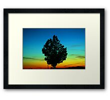 Surrounding beauty... Framed Print