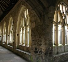 Cloister by Christine Leman