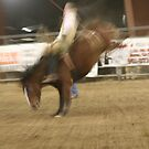 Bronco rider #2 by aasp