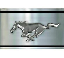 metallic Chrome Silver Stallion  Photographic Print
