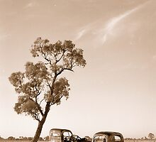 Parked in the shade by Gordon Slater