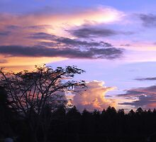 Honiara Sunset by judydiver