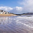 Lyme Regis - March by Susie Peek