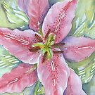 liliums 'for the love of flowers' © 2007 patricia vannucci  by PERUGINA