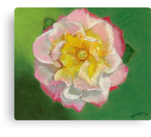 First Bloom 2 Canvas Print