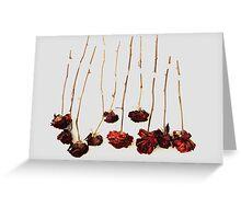 Ten Roses Greeting Card