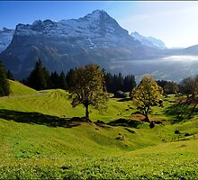 Grindelwald Valley by ozczecho