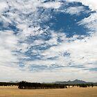 Stirling Range by garts