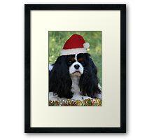 Ready For Christmas Framed Print