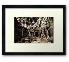 Tomb Raider (Ta Prohm, Siem Reap, Cambodia) Framed Print