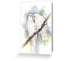 Corellas Greeting Card
