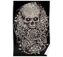 Skull & Roses Poster
