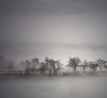 FOGGY CITY ISLAND by Lori Deiter