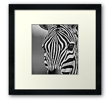 Natural Lines Framed Print