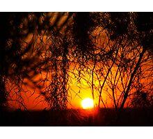 """Hidden Dawn"" Photographic Print"