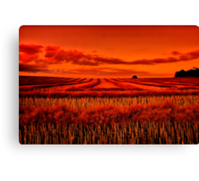 """Morning!! - After The Harvest"" Canvas Print"