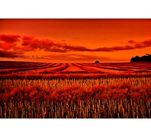 """""""Morning!! - After The Harvest"""" Photographic Print"""