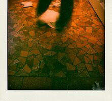 Faux-polaroids - Housework Dance #2 by Pascale Baud