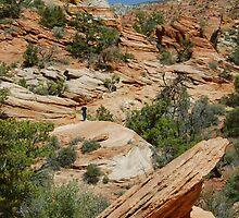 Zion Balanced Rock by Stephen Vecchiotti