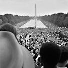 March on Washington for Jobs and Freedom - Crowds surrounding the Reflecting Pool, during the 1963 March on Washington. by Adam Asar