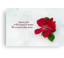 Jesus came in the dead of winter like a rose in the snow Canvas Print