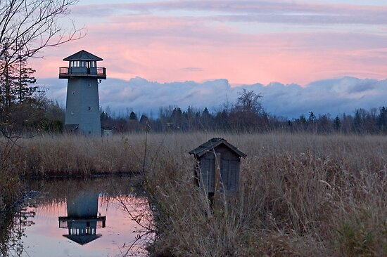Tennant Lake Lookout Tower by Appel
