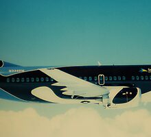 Shamu Airplane by debbiesue