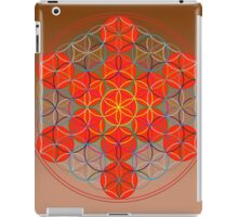 13 Spheres iPad Case/Skin