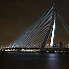 Erasmus Bridge by Brendan Schoon