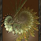 Natural Harvest Fractal by AngelMist