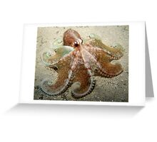 Octopus Spread. Greeting Card