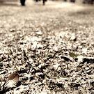 Snow Fight by Dylan Reid