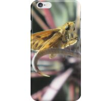 Skipper Butterfly on Fishhook Barrel Cactus Spine iPhone Case/Skin