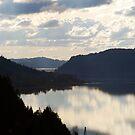 Columbia River by Jenny Ryan