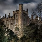 Arundel Castle by Diado