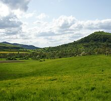 Fields, Meadows, Trees, Hills and Sky by Duncan Payne