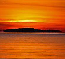 Daybreak by Rebecca Brann