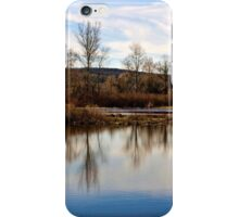 Trees on Tranquil Lake iPhone Case/Skin
