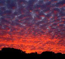 Welcome Glen Sunset by Cherie Roe Dirksen