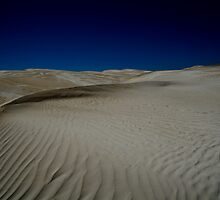 Sand Dunes by Sam Ward