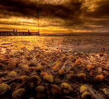 Seaside 'empties' by Billlee