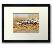 You want some? Framed Print