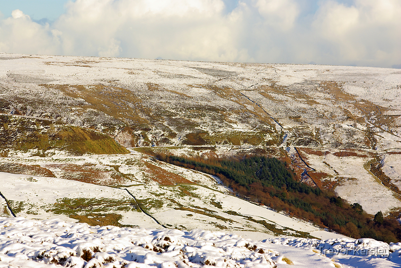 Views of the North Yorks Moors National Park #7 by Trevor Kersley