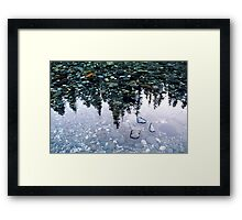 The Ancients - Jedediah Smith Redwoods State Park Framed Print