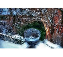 Snowy Walk  Photographic Print