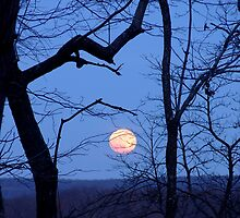 Full moon rise by InKibus