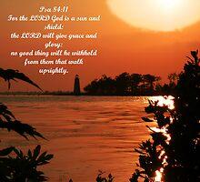 Psalm 84:11 by Michael Reimann