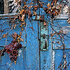 Old Door by Ray4cam