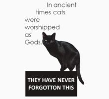 In Ancient Times Cats Were Worshipped As Gods by taiche