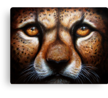 Save Me - Cheetah with Pleading Eyes Canvas Print